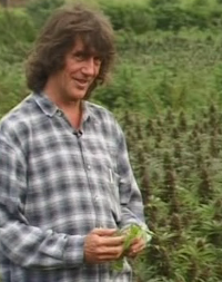 Howard marks cannabis nutrients