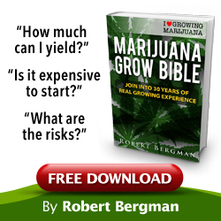 ILGM free marijuana grow bible